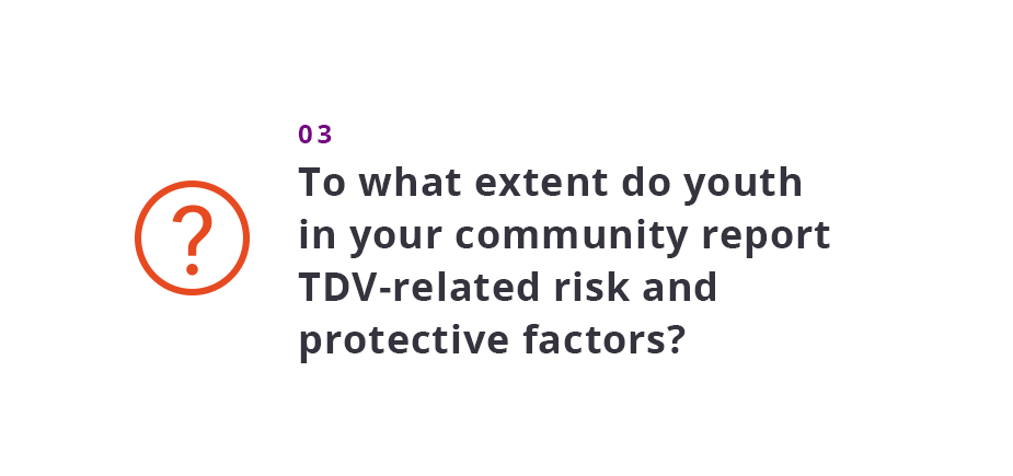 To what extent do youth in your community report TDV-related risk and protective factors?