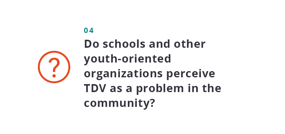 Do schools and other youth-oriented organizations perceive TDV as a problem in the community?